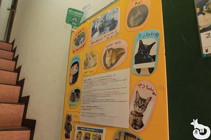 猫カフェTiME(タイム)へのアクセス方法|階段を上る
