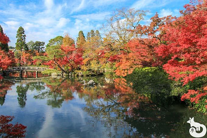 永観堂 放生池の紅葉