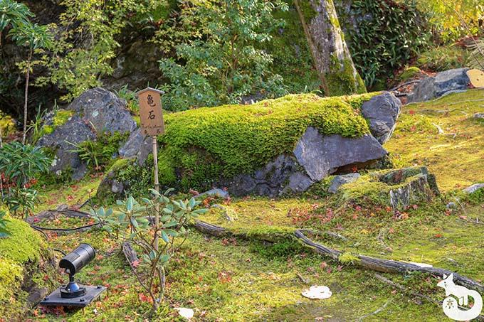宝厳院 亀石