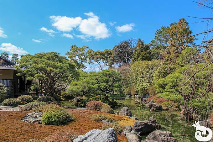 城南宮 しだれ梅と椿まつりの見どころ|庭園