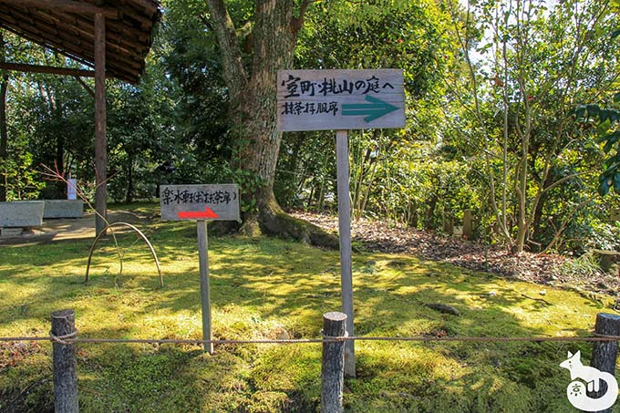 城南宮 しだれ梅と椿まつり|室町・桃山の庭への道案内