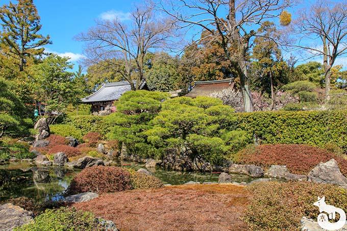 城南宮 しだれ梅と椿まつり|室町の庭