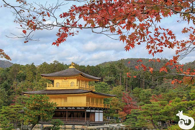 金閣寺 舎利殿の紅葉