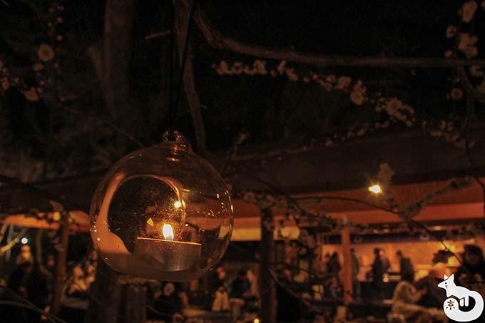 北野天満宮 梅のライトアップ 茶屋