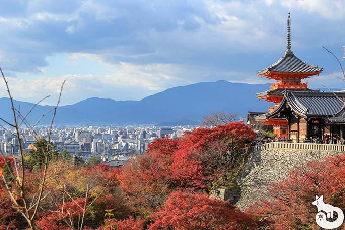 修学旅行におすすめの京都の観光スポット