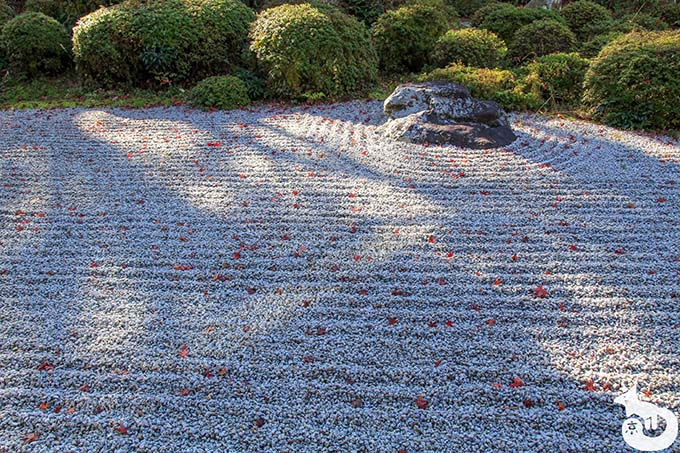 金福寺 枯山水庭園