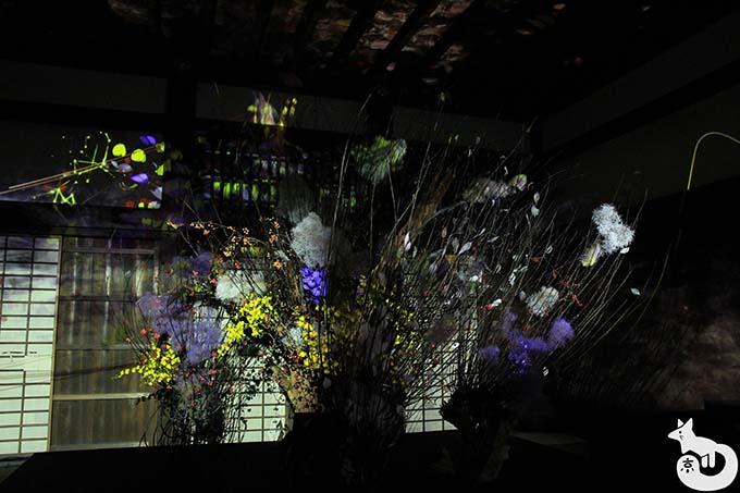 二条城 秋のライトアップ|秋嵐
