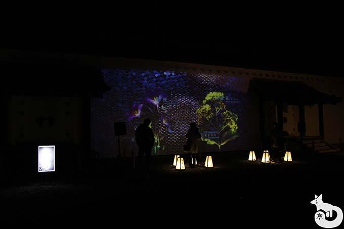 二条城 秋のライトアップ|MOSAIC FLOWERS