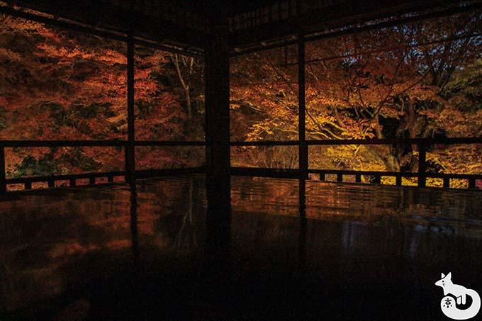 瑠璃光院 秋の紅葉