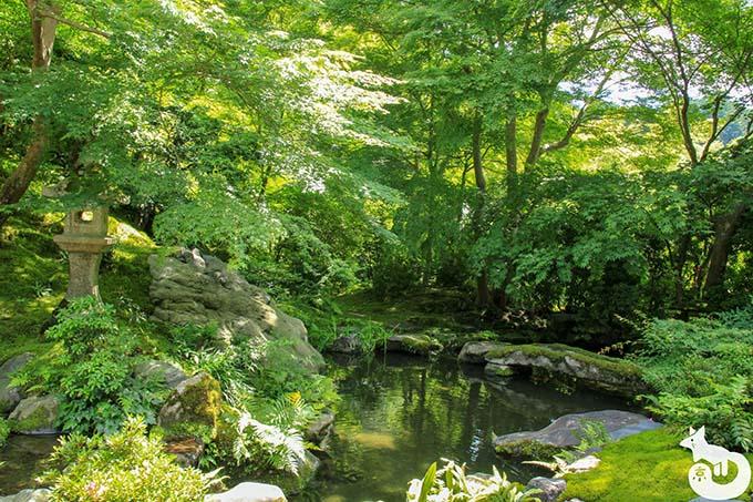 瑠璃光院 臥竜の庭