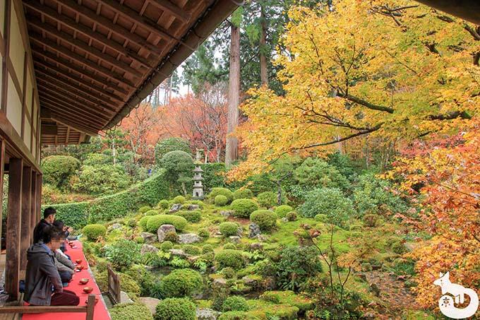 三千院 聚碧園の紅葉