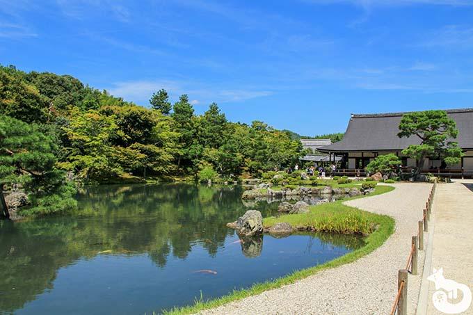 天龍寺で庭園をゆっくり鑑賞