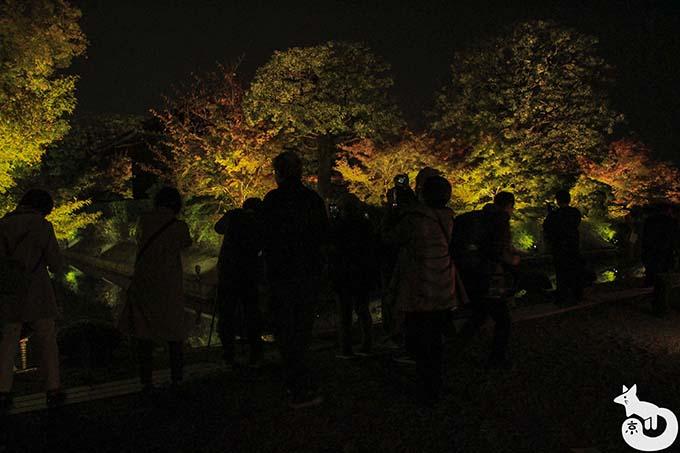 東寺 秋のライトアップ|入口付近の五重塔の撮影場所の混雑状況