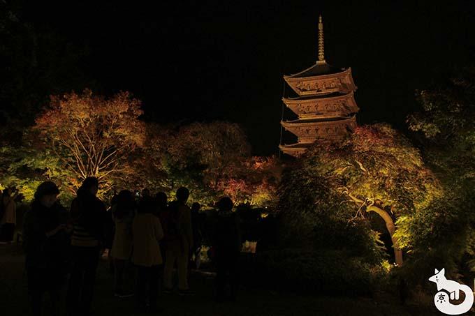 東寺 秋のライトアップ|瓢箪池の混雑状況