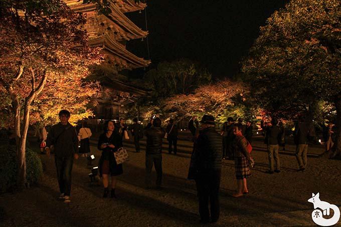 東寺 秋のライトアップ|五重塔付近の混雑状況