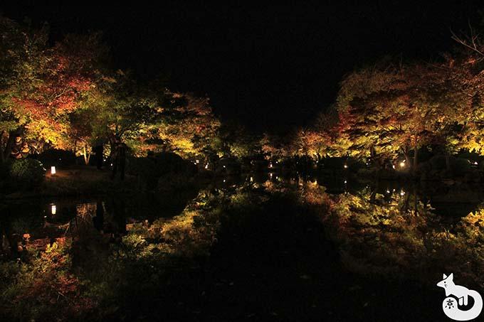 東寺 秋のライトアップ|瓢箪池