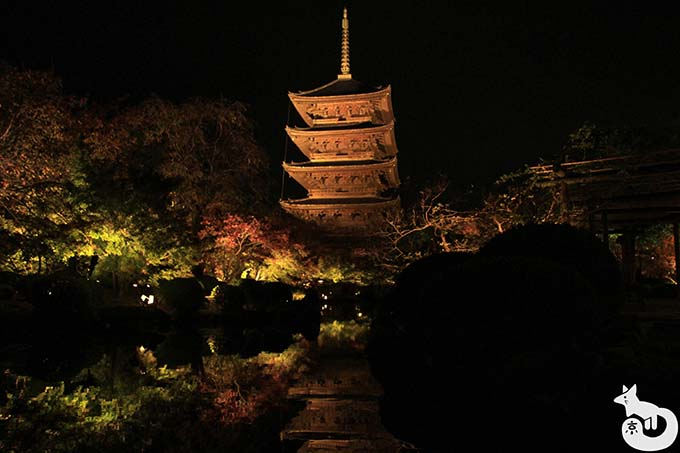 東寺 秋のライトアップ|瓢箪池に映り込む五重塔