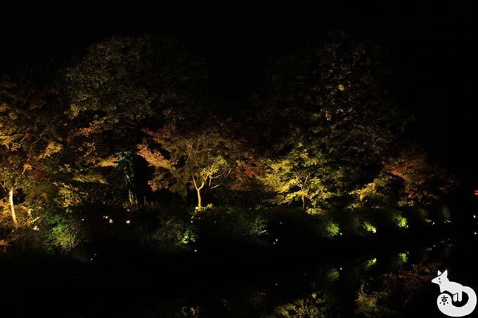 東寺 秋のライトアップ|水面に映り込むライトアップ