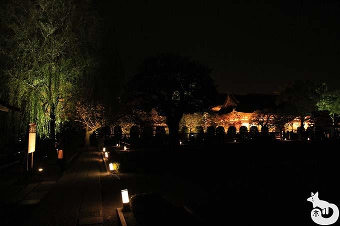 東寺 秋のライトアップ|宝蔵付近の様子