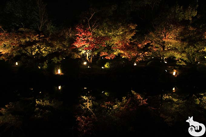 東寺 秋のライトアップ|池周辺のライトアップ