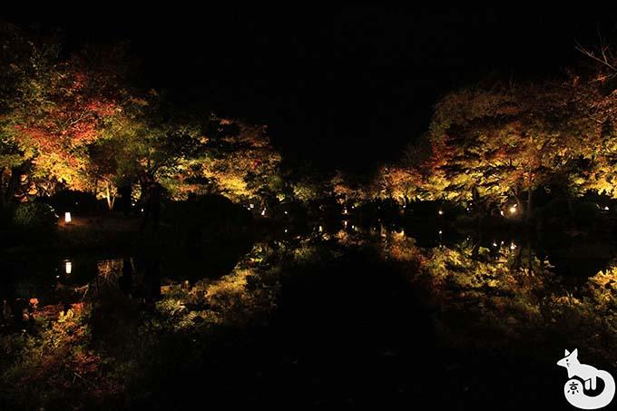 東寺 秋のライトアップ|瓢箪池のライトアップ