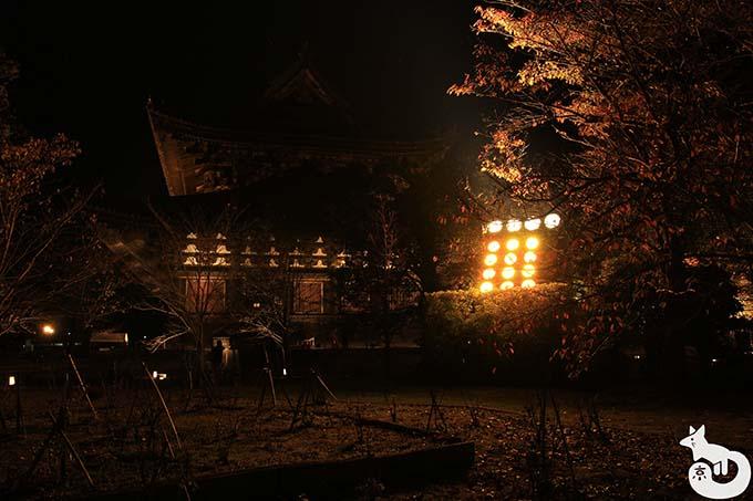 東寺 秋のライトアップ|五重塔をライトアップしている装置
