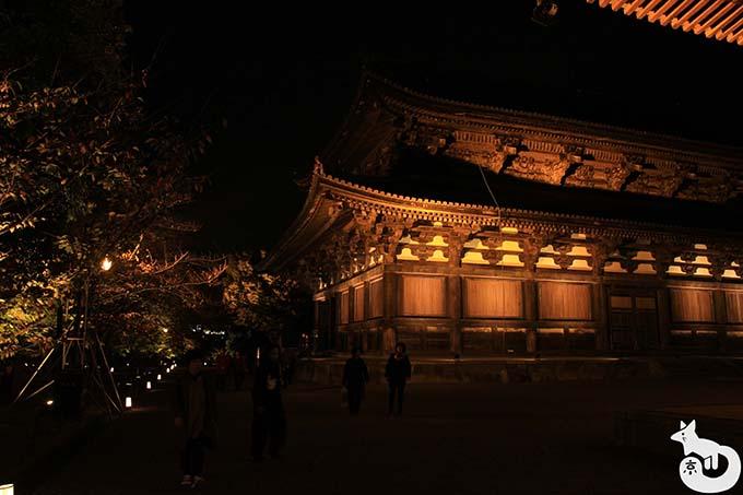 東寺 秋のライトアップ|金堂のライトアップ