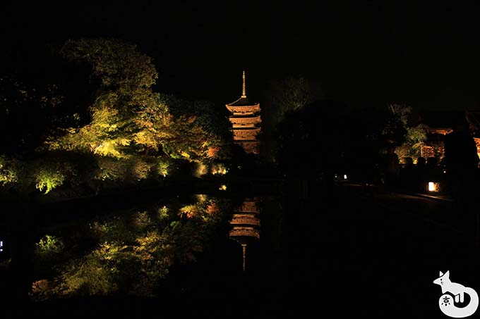 東寺 秋のライトアップ|水路付近から撮影した五重塔