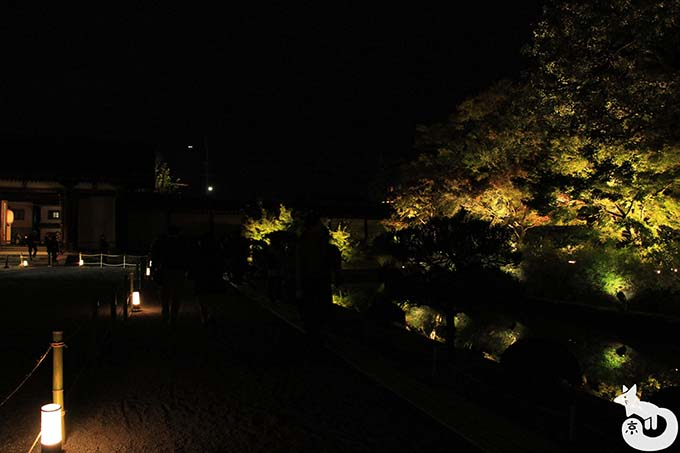 東寺 秋のライトアップ|帰り道