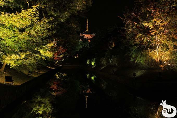 東寺 秋のライトアップ|入口付近から撮影した五重塔