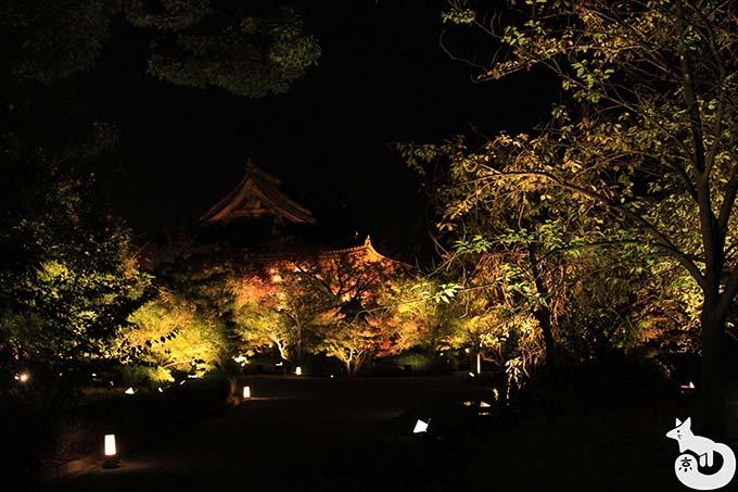 東寺 秋のライトアップ|講堂のライトアップ