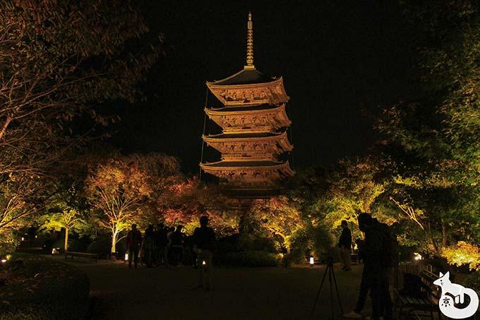 東寺 秋のライトアップ|瓢箪池周辺の様子