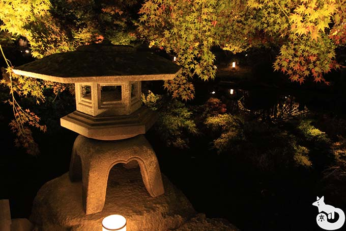 東寺 秋のライトアップ|灯篭と紅葉のライトアップ