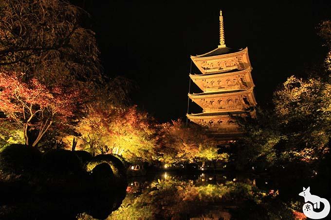 東寺 秋のライトアップ|瓢箪池から撮影した五重塔