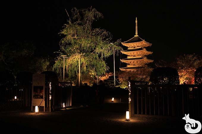 東寺 秋のライトアップ|ライトアップ会場の入口