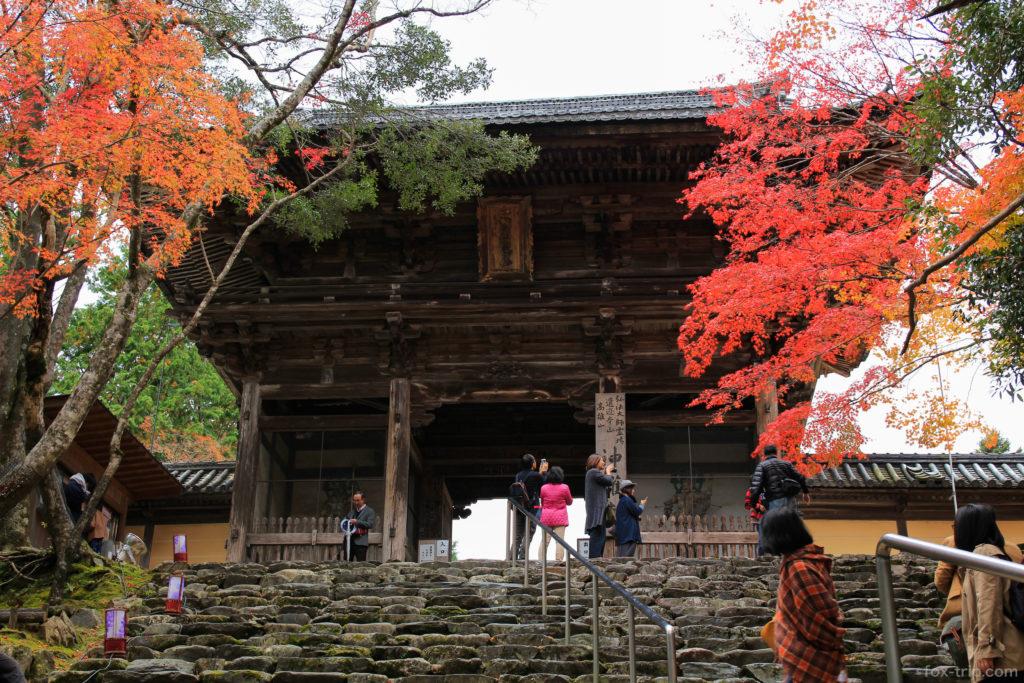 神護寺の紅葉 楼門