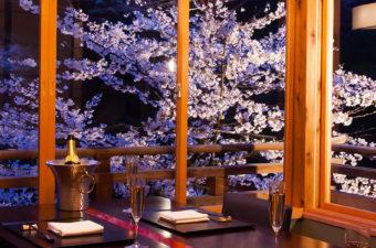 星のや京都 桜
