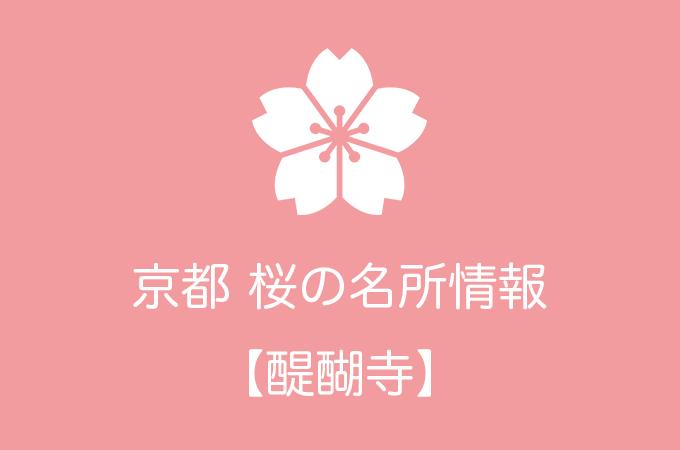 醍醐寺の桜情報|2019年の開花予想から例年の見頃時期まで