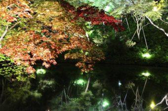 京都祇園四条周辺の着物・浴衣のおすすめ店舗を紹介