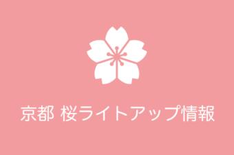 京都 夜桜ライトアップ|2018年の開催期間まとめ