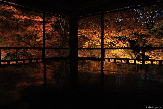 書院の紅葉