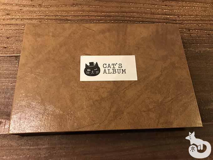 猫たちのアルバム