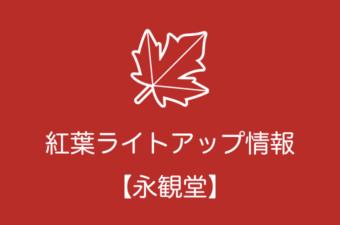永観堂の紅葉ライトアップ情報|2018年の開催日程