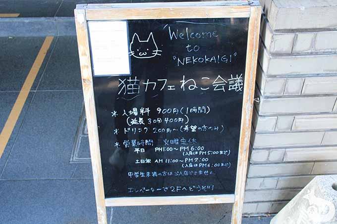 猫カフェねこ会議の看板