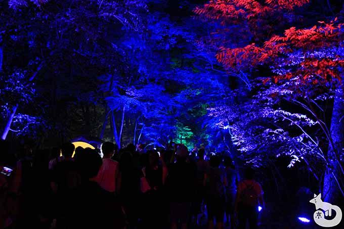糺の森 ライトアップ