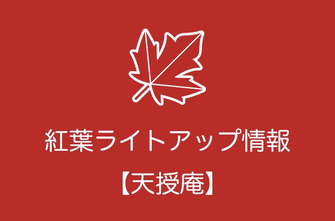 天授庵の紅葉ライトアップ情報|2019年の開催日程