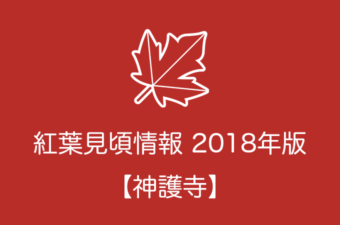神護寺の紅葉情報2018 色づき始めの時期や見頃情報