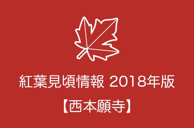 西本願寺の紅葉情報2018|色づき始めの時期や見頃情報