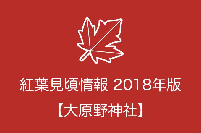大原野神社の紅葉情報2018|色づき始めの時期や見頃情報