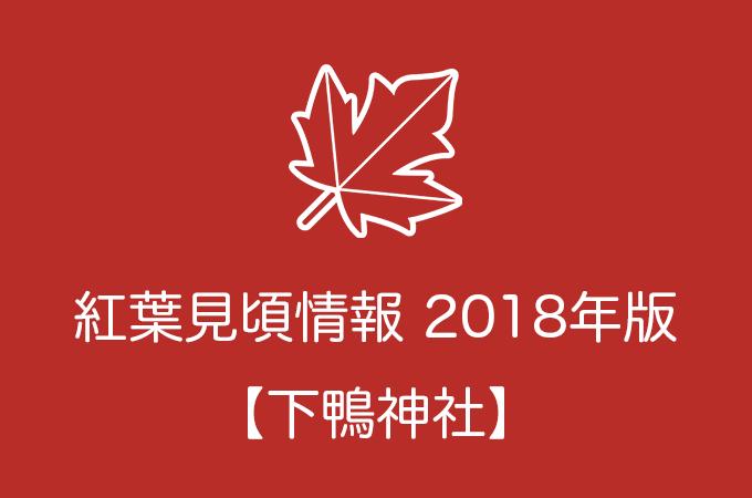 下鴨神社の紅葉情報2018|色づき始めの時期や見頃情報